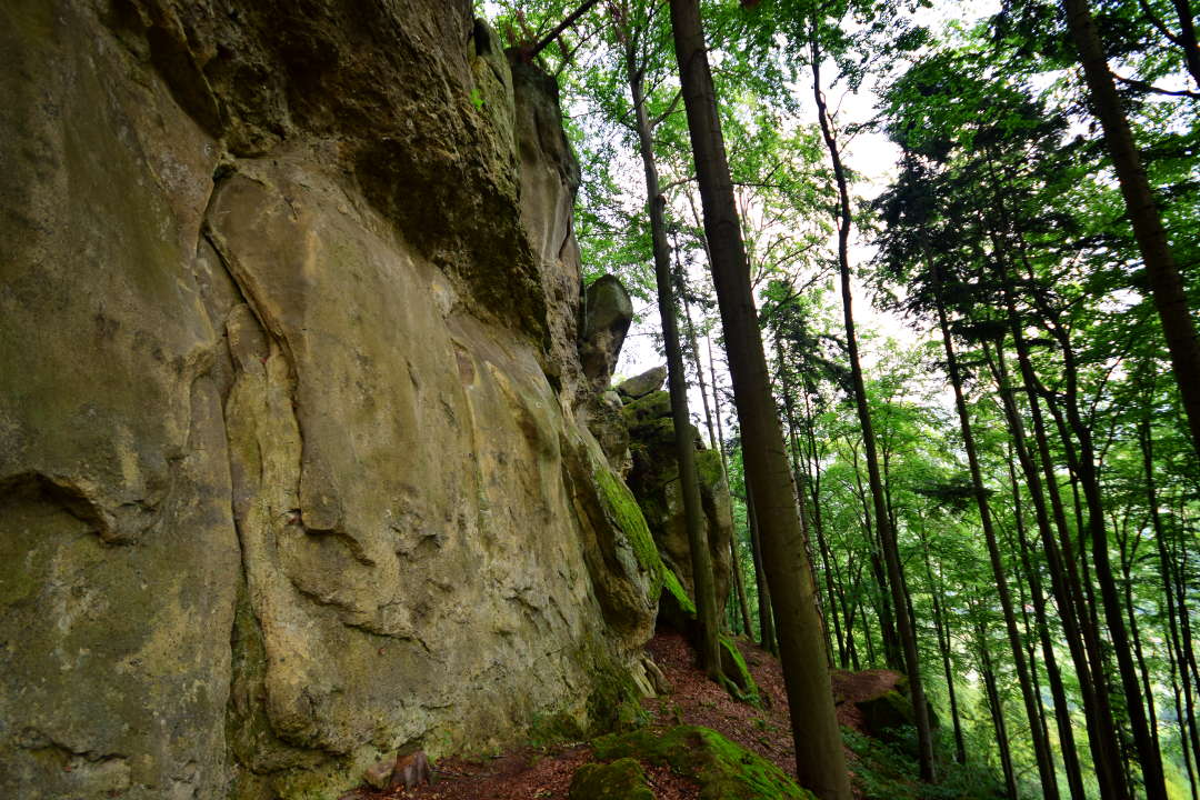 Skalní stěna na Klenově