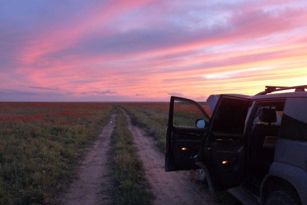 Makové pole, Kazachstán