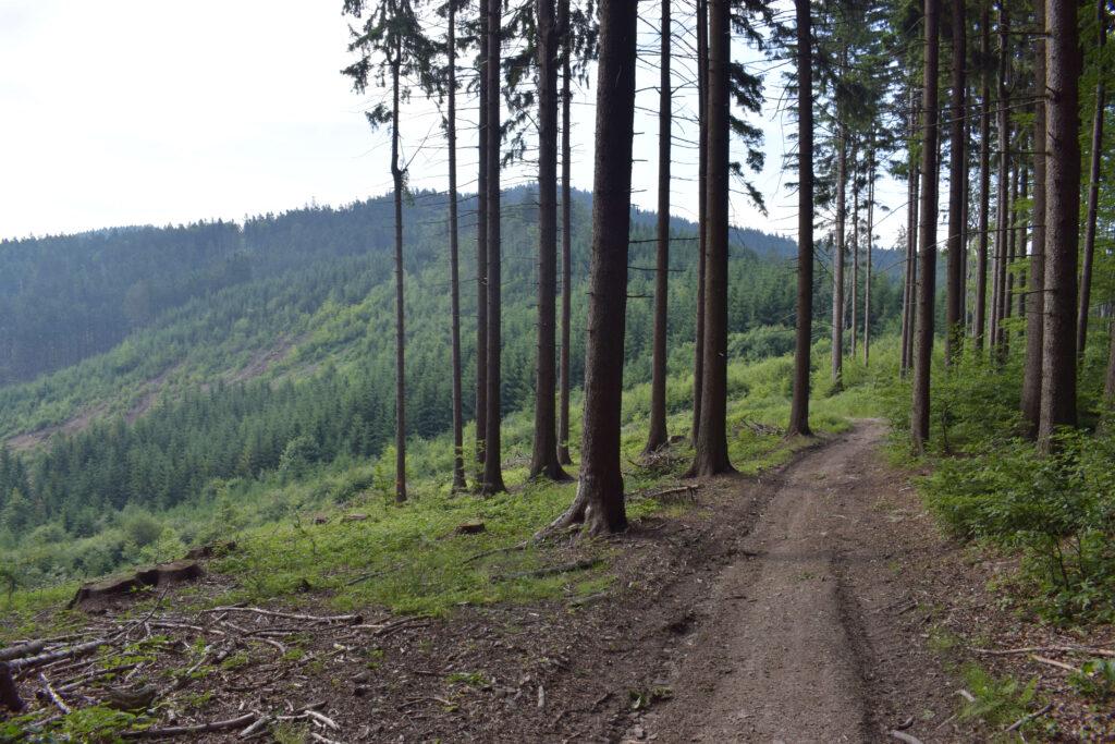 Lušovka, Vsetínské vrchy