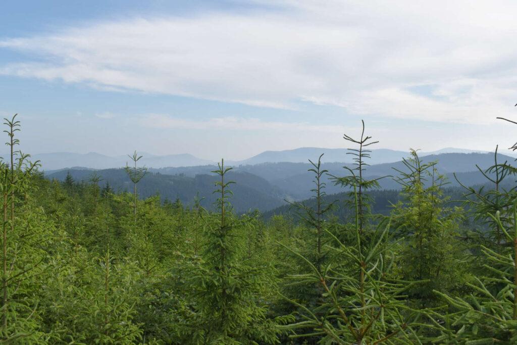 Výhled na Moravskoslezské Beskydy a Vsetínské vrchy