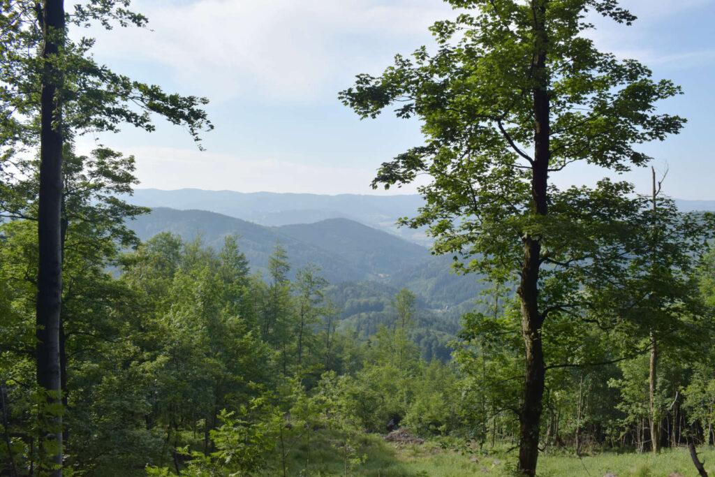 Výhled na Javorníky