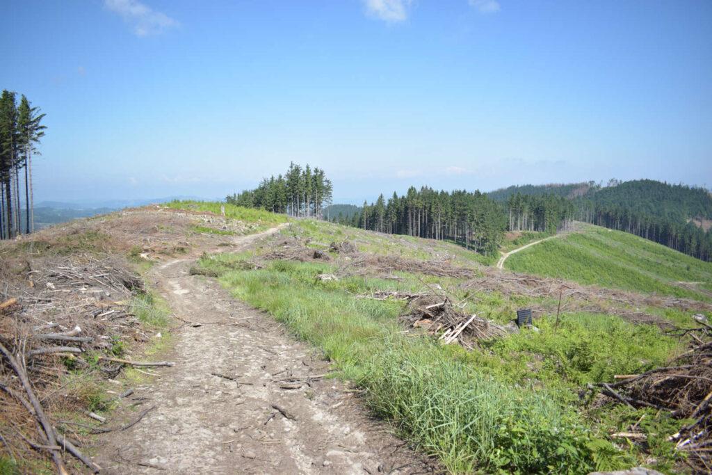 Vsetínské vrchy, hřebenovka, výhledy